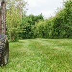 Tout savoir sur les tracteurs tondeuses